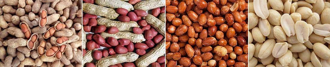 Types Of Peanuts