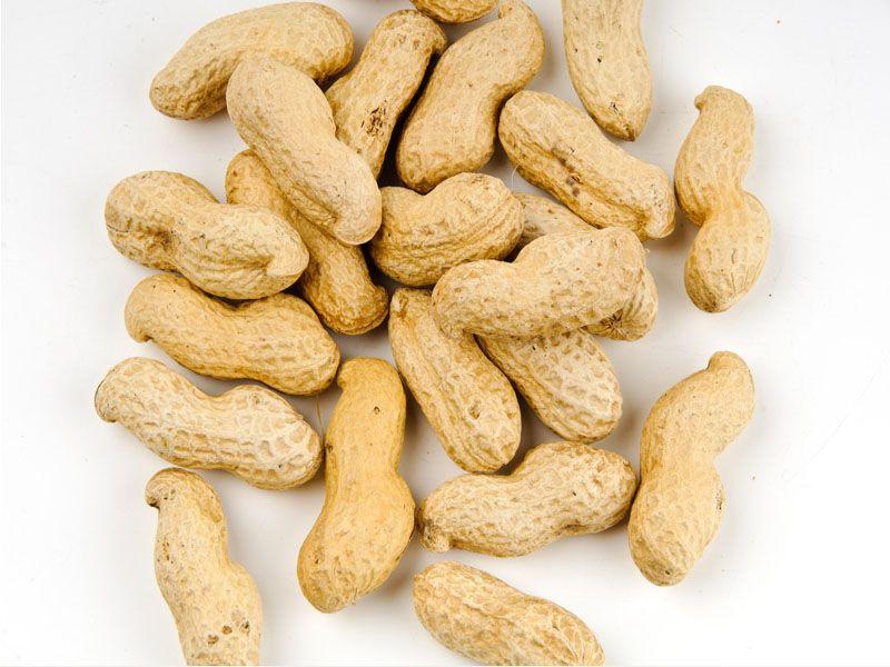 Basic Peanut...